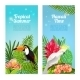 Tropical Island Bird Banners - GraphicRiver Item for Sale