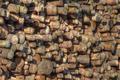 Pile Of logs - PhotoDune Item for Sale