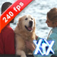 Happy Couple With Dog - VideoHive Item for Sale