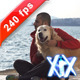 Stroking The Dog - VideoHive Item for Sale