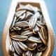 sunflower seeds - PhotoDune Item for Sale