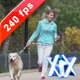 Young Woman With Her Dog - VideoHive Item for Sale