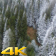 Aerial Flying Above Winter Snow Forest - VideoHive Item for Sale