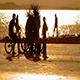 Friends with Bicycles at Seaside 2 - VideoHive Item for Sale