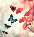 Flowers And Butterflies - PhotoDune Item for Sale