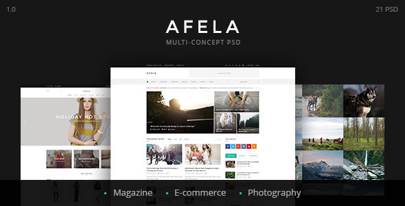 ThemeForest Afela Multi-concept e-Commerce PSD Template 11122688