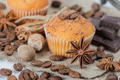 Cupcakes with chocolate chips - PhotoDune Item for Sale