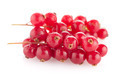 Red Currants - PhotoDune Item for Sale