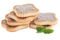 Chocolate tart cookies - PhotoDune Item for Sale