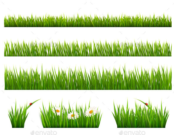 GraphicRiver Green Grass 11162085