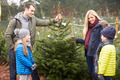 Outdoor Family Choosing Christmas Tree Together - PhotoDune Item for Sale