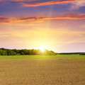 plowed field and beautiful sunset - PhotoDune Item for Sale