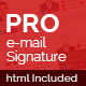 Professional Email Signature - GraphicRiver Item for Sale