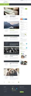17_blog-with-sidebar.__thumbnail