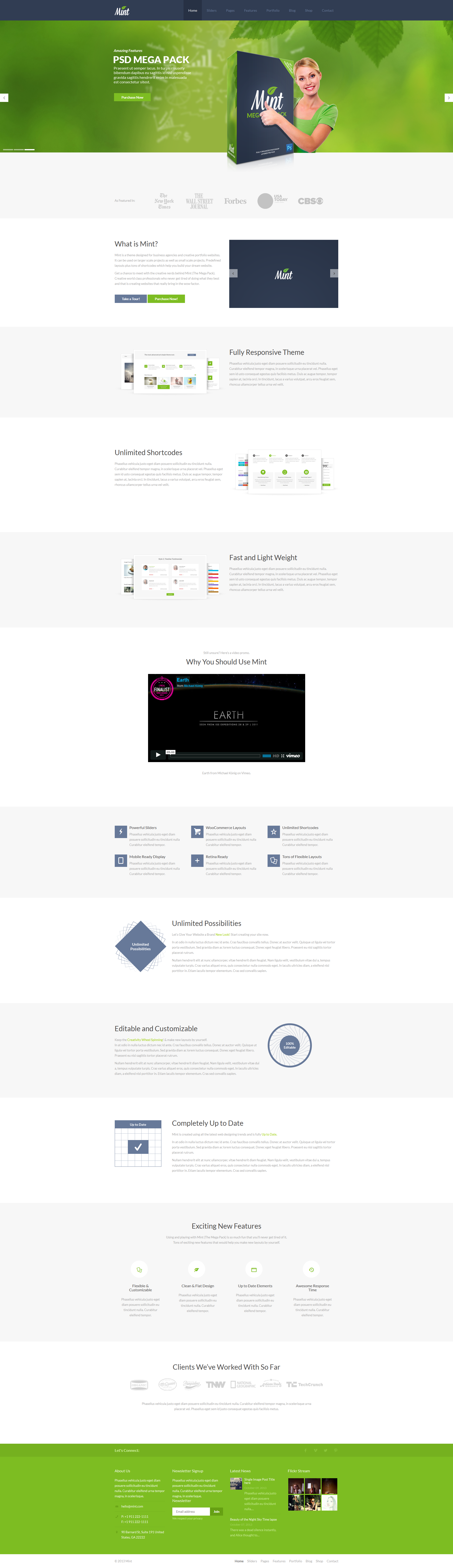 Mint - Responsive Multi-Purpose WordPress Theme