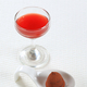 Chocolate truffle and fruit coulis - PhotoDune Item for Sale