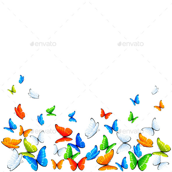 GraphicRiver Butterflies on White Background 11172000