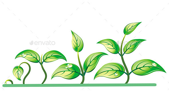 GraphicRiver Progression of Seedling Growth 11177101