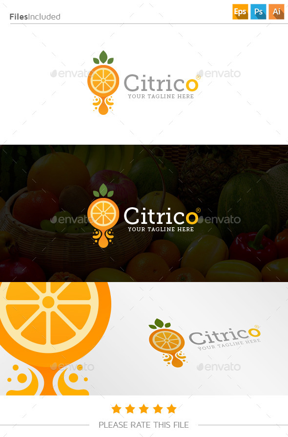 GraphicRiver Orange Juice Logo 11177169