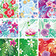 Set of Seamless Floral Pattern - GraphicRiver Item for Sale