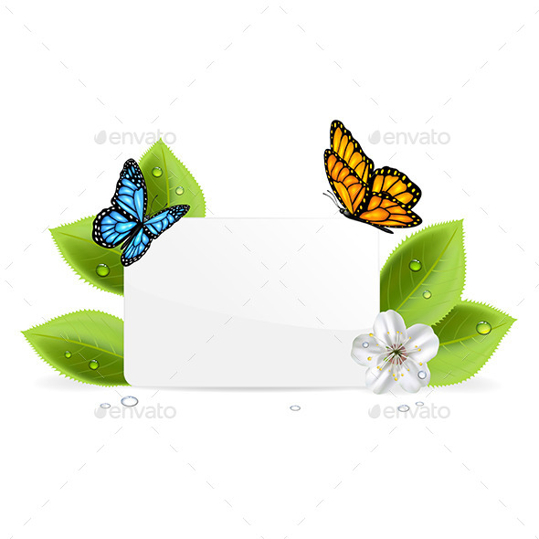 GraphicRiver Paper Card with Butterflies 11177659