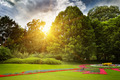 beautiful summer park and sunset - PhotoDune Item for Sale