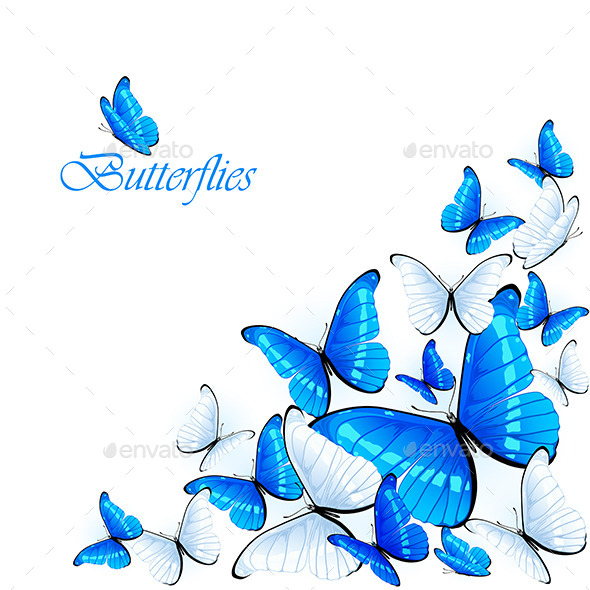 GraphicRiver Blue Butterflies 11181387