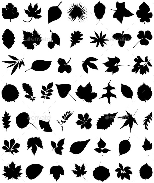 GraphicRiver Leaves 11181394