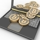 Bitcoins with laptop computer - PhotoDune Item for Sale