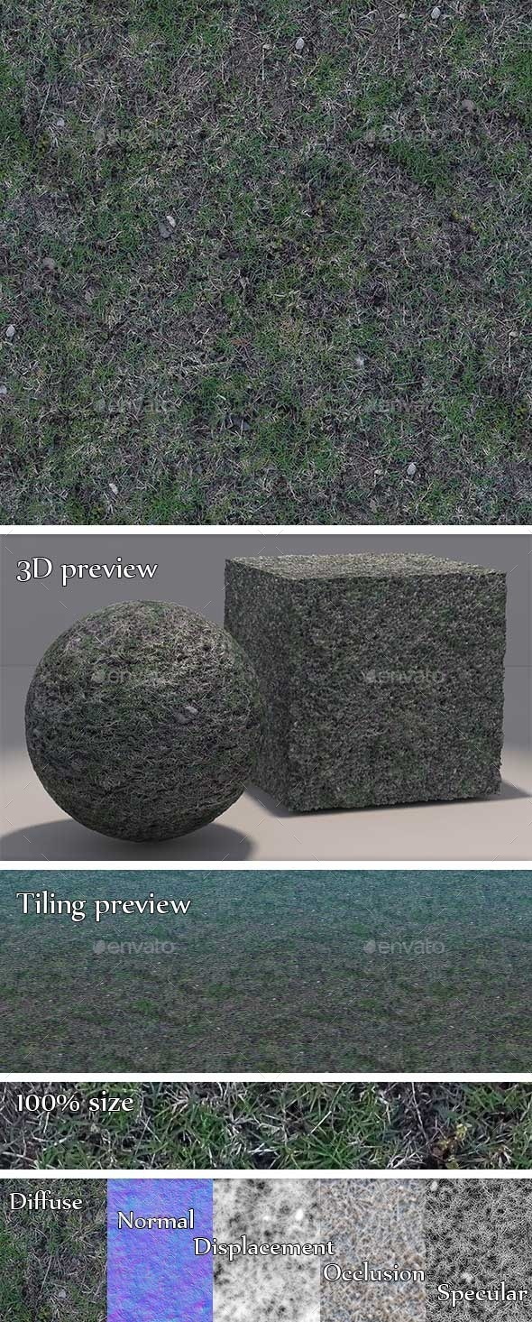 3DOcean Grass Dry and Patchy Seamless Texture 11195554