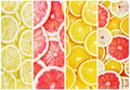 background with citrus-fruit - PhotoDune Item for Sale