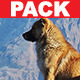 Corporate Logo Pack - AudioJungle Item for Sale