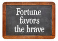 Fortune favors the brave - PhotoDune Item for Sale