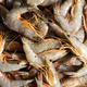 background of the large fresh shrimp seafood - PhotoDune Item for Sale
