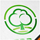 Tree Brand Logo - GraphicRiver Item for Sale