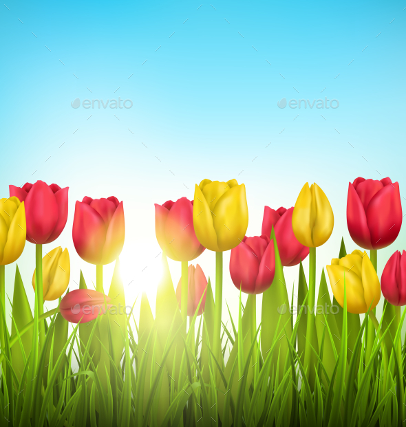 GraphicRiver Grass Lawn with Yellow and Red Tulips and Sunlight 11200563