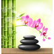 Spa Stones with Pink Orchid and Bamboo - GraphicRiver Item for Sale