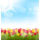 Yellow and Red Tulips and Sunlight on Blue Sky - GraphicRiver Item for Sale