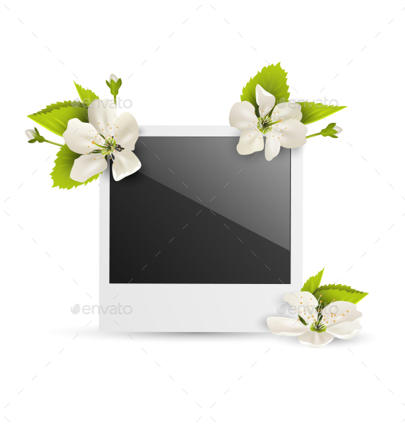GraphicRiver Photo Frame with White Cherry Flowers on White 11200675