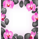 Spa Stones with Orchids Pink Flowers like Frame - GraphicRiver Item for Sale
