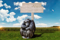idly chimpanzee, sitting in front of a wooden sign - PhotoDune Item for Sale