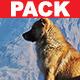 Corporate Sound Pack - AudioJungle Item for Sale