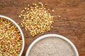 buckwheat grain and flour - PhotoDune Item for Sale