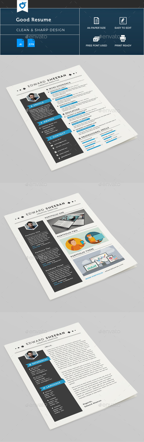 GraphicRiver Good Resume 11165982