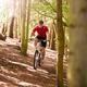 Man Riding Mountain Bike Through Woods - PhotoDune Item for Sale