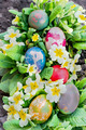 Colorful Easter eggs - PhotoDune Item for Sale