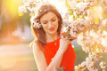 beautiful young girl on a background of flowering trees - PhotoDune Item for Sale