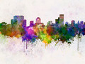 Columbia skyline in watercolor background - PhotoDune Item for Sale