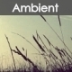 The Ambient - AudioJungle Item for Sale