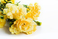 Yellow soft spring flowers bouquet on white background - PhotoDune Item for Sale